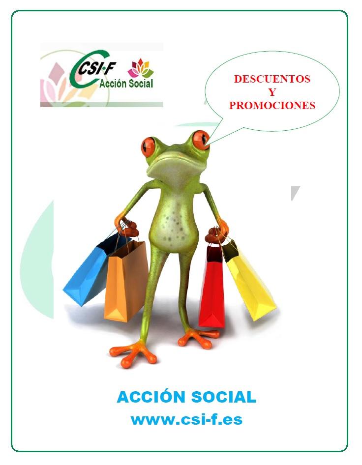 acc-soc-Z.JPG