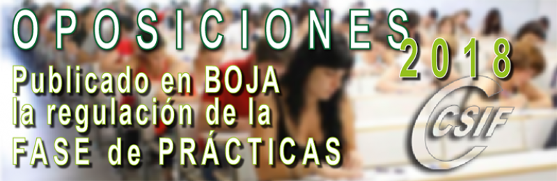 Publicada en BOJA la regulación de la Fase de Prácticas de las Oposiciones 2018