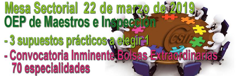Resumen Mesa Sectorial OEP MAESTROS E INSPECCIÓN