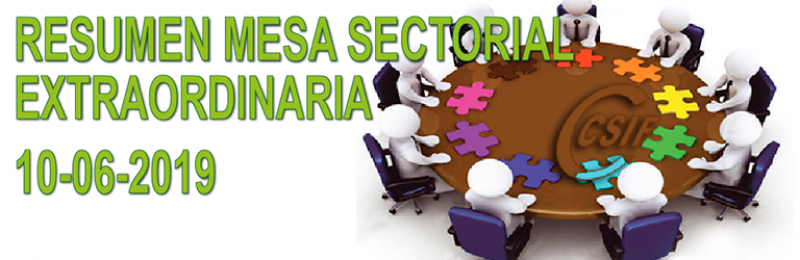Resumen Mesa Sectorial EXTRAORDINARIA del 10 de junio de 2019