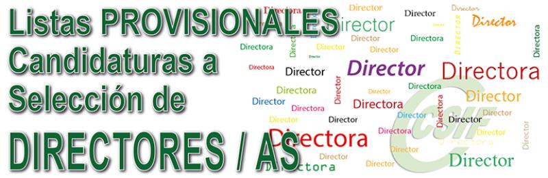 Listas PROVISIONALES de candidaturas admitidas en el procedimiento de Selección de Directores y Directoras