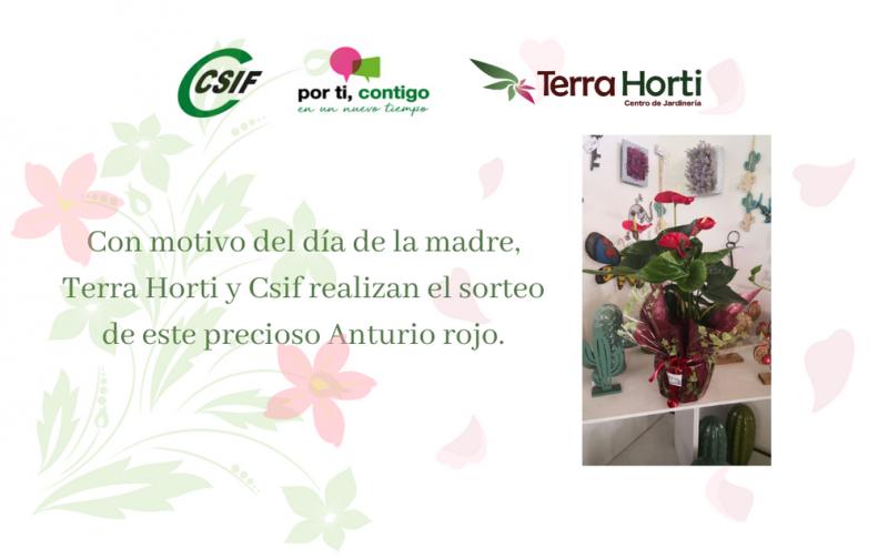 SORTEO TERRA HORTI Y CSIF