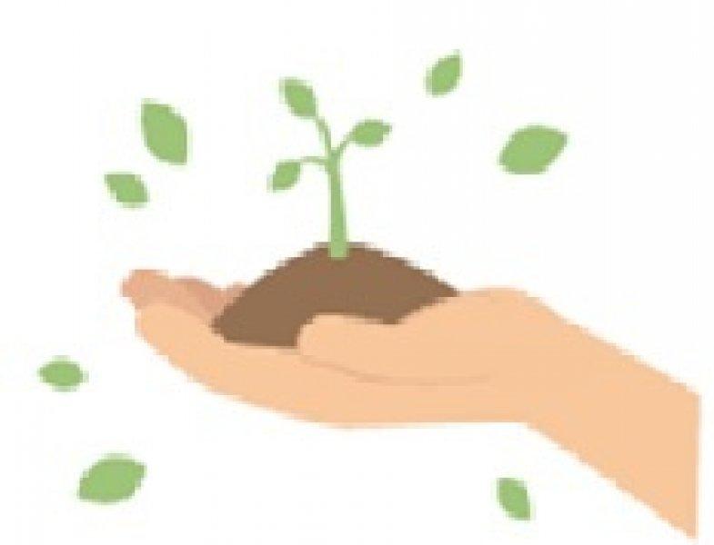 'Hacia una administración ambiental verdaderamente eficaz y al servicio de la ciudadanía'