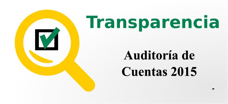 Auditoria Cuentas CSIF 2015