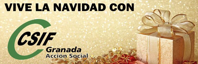 Fiesta de Navidad CSIF Granada
