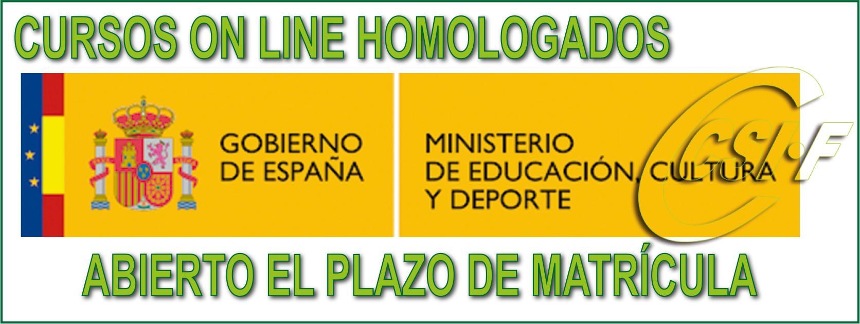 Cursos Homologados por el Ministerio - 2019