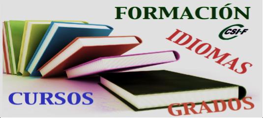 Formación del sector de Educación