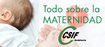 Todo sobre la maternidad