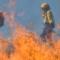 CSIF-A logra que la Agencia Amaya dote con los accesorios adecuados a los cascos de los bomberos forestales