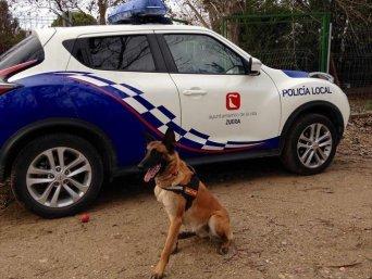 II Jornadas Policiales Multidisciplinares