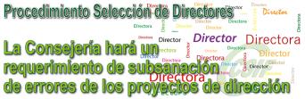La Consejería hará un requerimiento de subsanación de errores de los proyectos de dirección