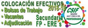 TODA LA INFORMACIÓN SOBRE LA COLOCACIÓN DE SECUNDARIA, FP y ERE´S 2018-2019