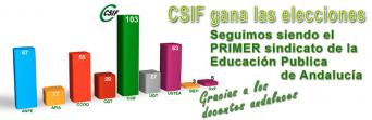 CSIF GANA LA ELECCIONES EN LA EDUCACIÓN PÚBLICA DE ANDALUCÍA.