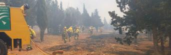 El juez condena a pagar los gastos por desplazamiento a un bombero forestal que precisó rehabilitación tras sufrir un accidente de trabajo