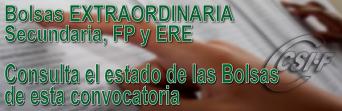 Bolsas EXTRAORDINARIAS - Profesores de Enseñanza Secundaria - Situación actual: