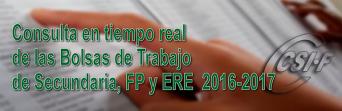Activada la consulta en tiempo real de las BOLSAS de TRABAJO de Secundaria, FP y ERE