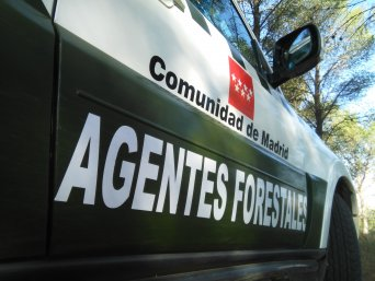 Agentes Forestales CSIF Madrid