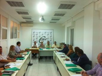 Imagen de la reunión del Consejo Autonómico