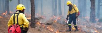 CSIF-A comparte con el consejero de Medio Ambiente inquietudes sobre los bomberos forestales