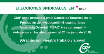 CSIF logra cuatro miembros en el comité de empresa de FIBAO