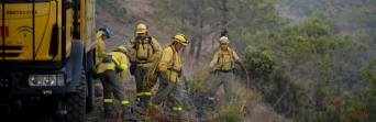 Delegados de CSIF en la Agencia Amaya exigen que el dispositivo contra incendios esté al cien por cien durante todo el año