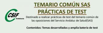 Curso sobre prácticas de test del temario común del SAS