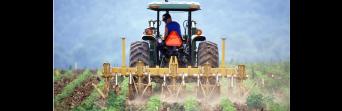 CSIF-A reclama medidas para acabar con la temporalidad y la estacionalidad del empleo en Andalucía