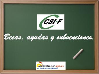 Boletín quincenal de ayudas, subvenciones, becas y premios.