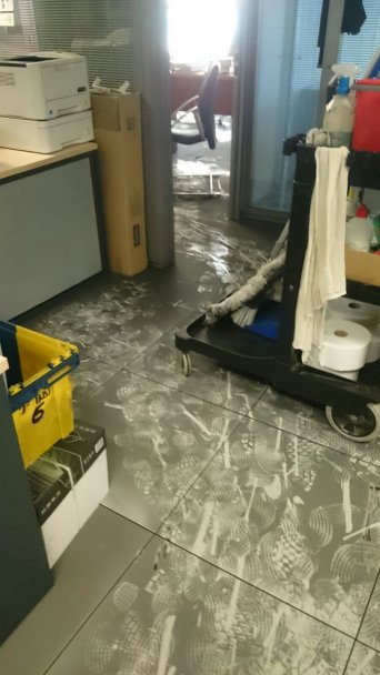 Situación con la que se encontró el equipo de limpieza el lunes 11 de septiembre